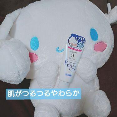 パーフェクトホワイトクレイ/SENKA(専科)/洗顔フォームを使ったクチコミ(1枚目)