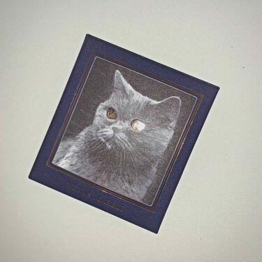 アイシャドウ猫シリーズ/Venus Marble(ヴィーナスマーブル)/パウダーアイシャドウを使ったクチコミ(1枚目)
