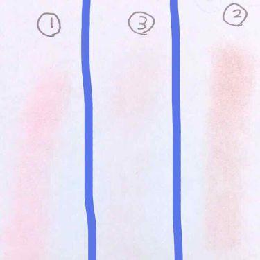 アイニュアンス/CANMAKE/パウダーアイシャドウを使ったクチコミ(3枚目)