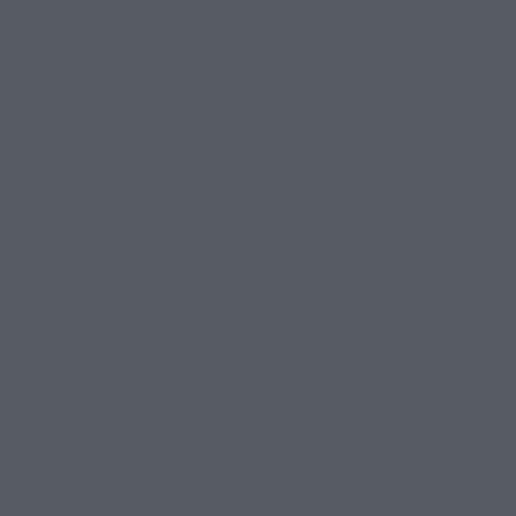 プライベート シャドウ 06 ブラック オニキス (パイエット)