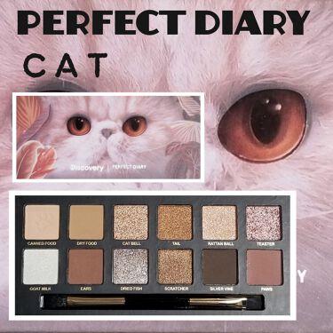 Animalシリーズ/完美日記(Perfect Diary)/パウダーアイシャドウを使ったクチコミ(2枚目)