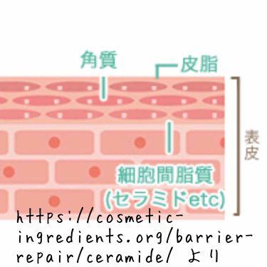 アクアデュウエナジー EX/MACHERIE/アウトバストリートメントを使ったクチコミ(3枚目)