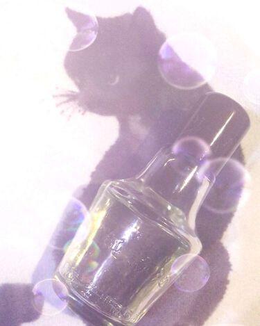 黒ばら 純椿油/黒ばら本舗/アウトバストリートメントを使ったクチコミ(1枚目)