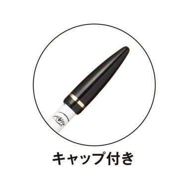 アイフル アイライナー/ビボ/ペンシルアイライナーを使ったクチコミ(2枚目)