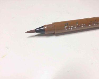 エスポルール カラーアイライナーB/DAISO/リキッドアイライナーを使ったクチコミ(2枚目)