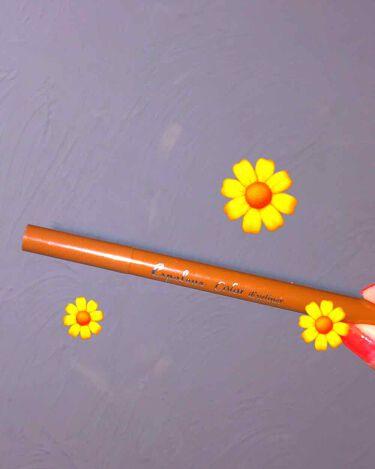 エスポルールカラーアイライナー/DAISO/リキッドアイライナーを使ったクチコミ(1枚目)