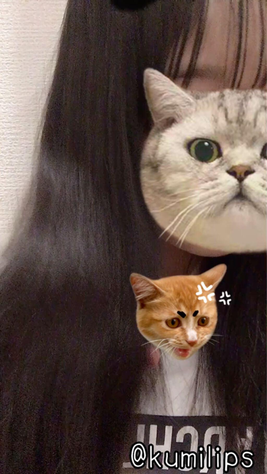 【動画付きクチコミ】髪サラサラになりたくない?そんな方に私の髪がサラサラになったヘアケアグッズ紹介してやるよ✂ーーーーーーーーーーーーーーーーーこんにちは!93(くみ)です!今回は私がサラサラ髪になったヘアケアグッズをご紹介しちゃいます🙆♀️それでは...