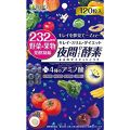 ISDG 医食同源ドットコム 夜間Diet酵素