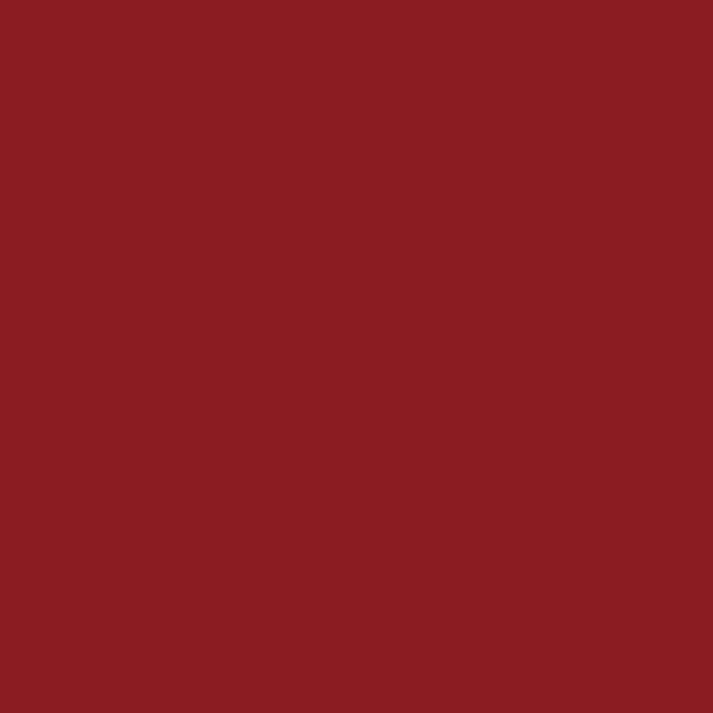 ネイルホリックRO604