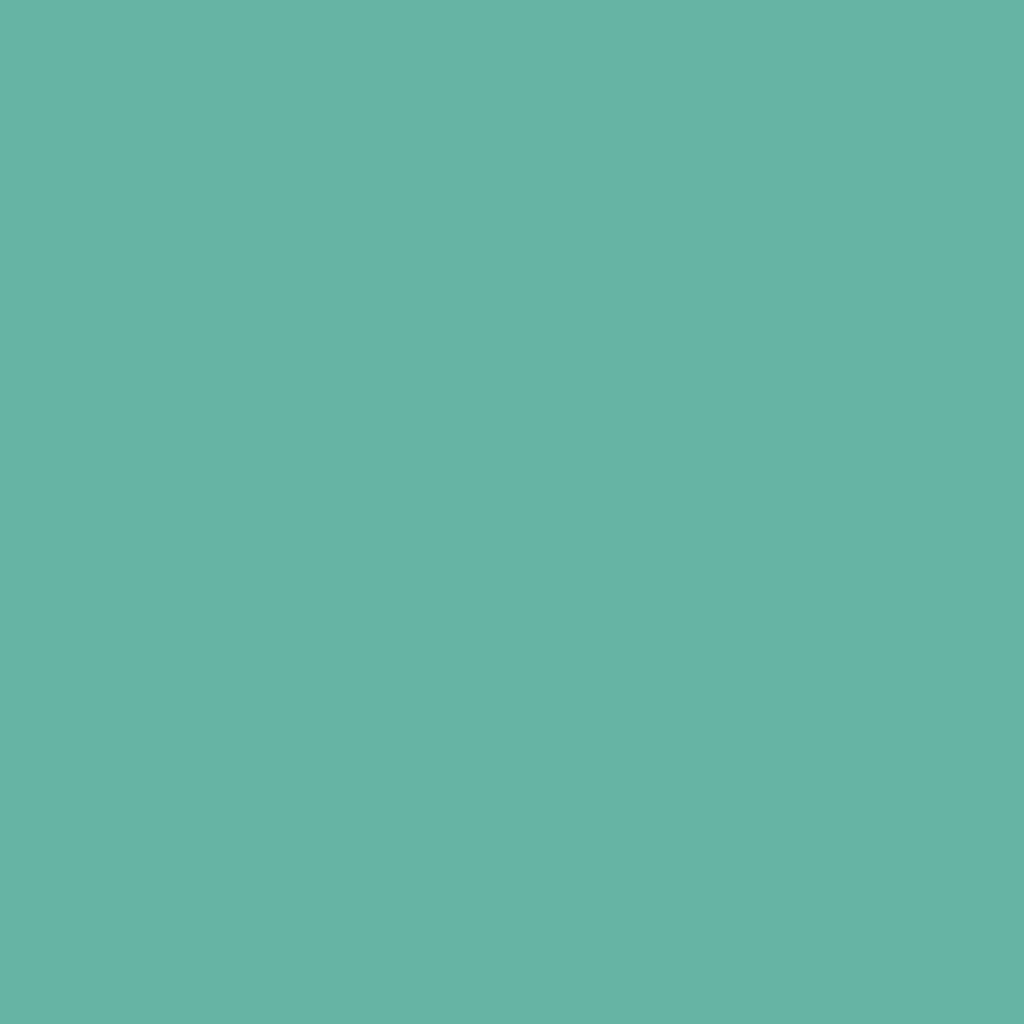 カラー ショー ライナーGN-1