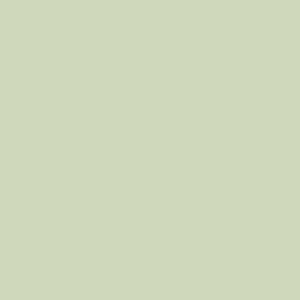 プレスド アイシャドー (レフィル)P ライト グリーン 520