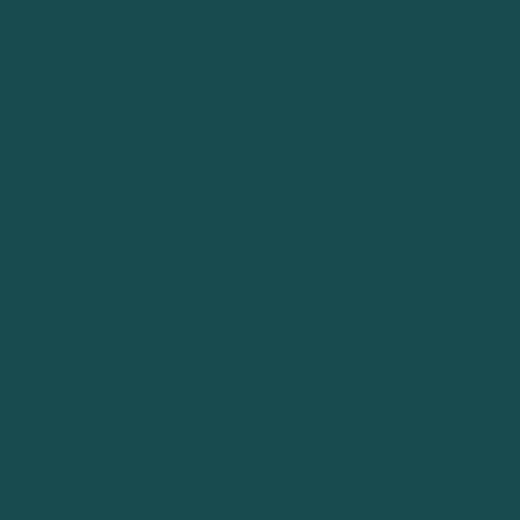 ネイルカラー EX EX-46 ディープグリーン