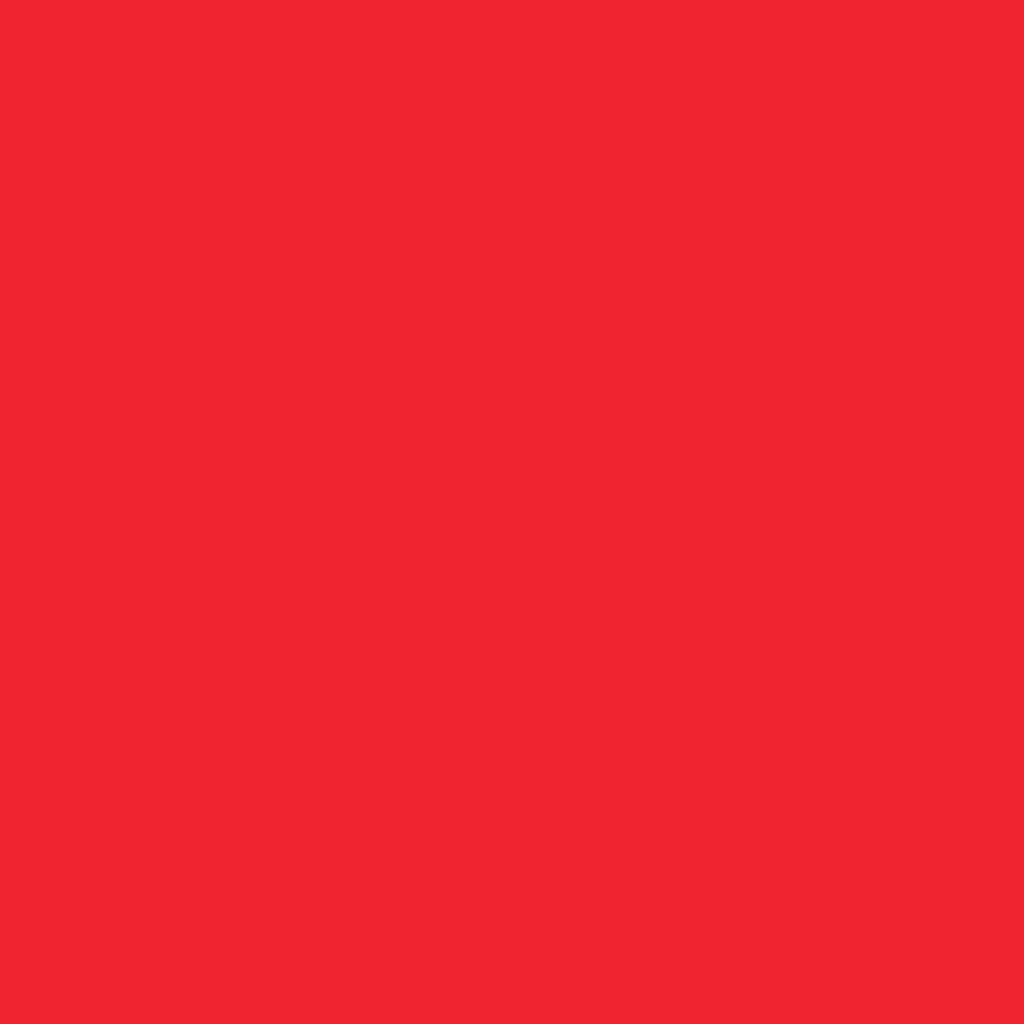 ネイル ポリッシュ 19 Paprika/パプリカ(生産終了)