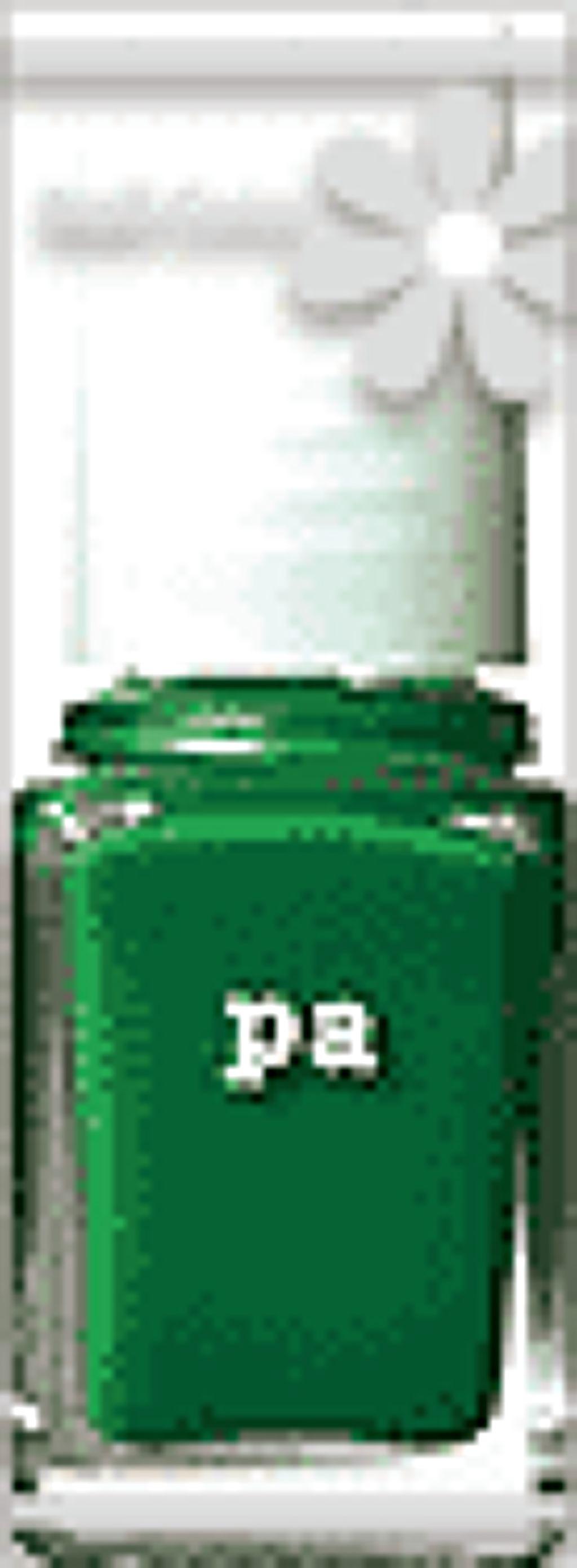 pa ネイルカラー(旧) A96