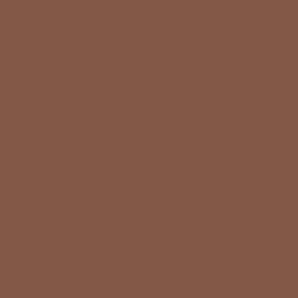 プレスド アイシャドー (レフィル)ME ダーク ブラウン 896