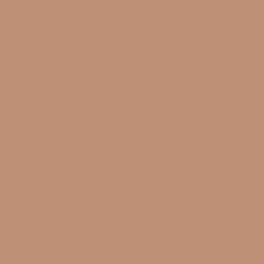 フェース コントロール カラー4 マットブラウン