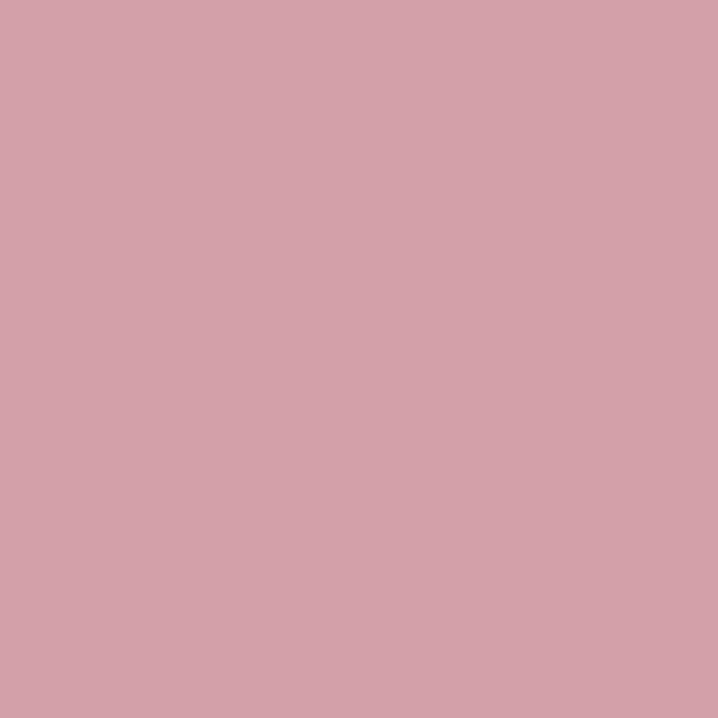 チーク カラー(ブラシ付)242 ローズ系パール