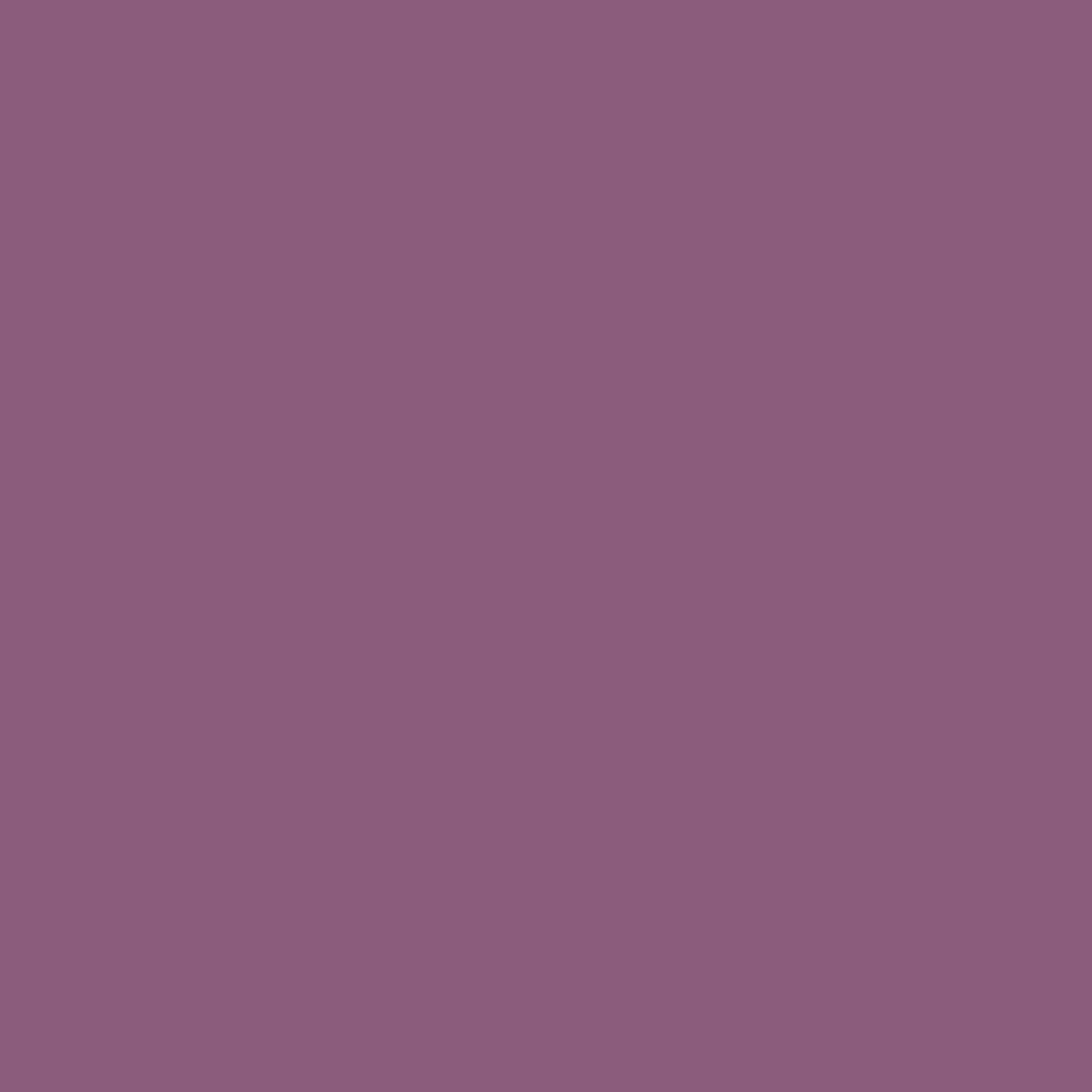ベルベットマットリップペンシル2491