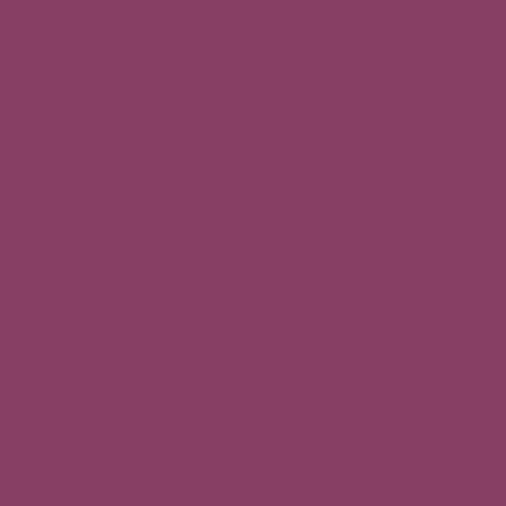 リップ カラー29A ジャック