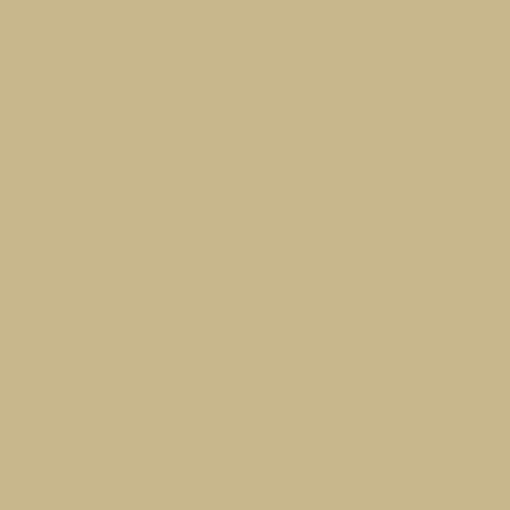 プレスド アイシャドー (レフィル)G ホワイトゴールド