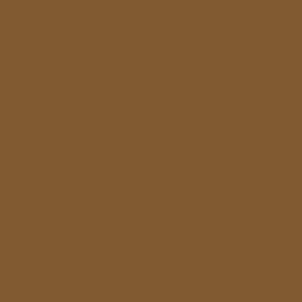 ラスティングアイブロウティント F01 ライトブラウン(限定デザイン)