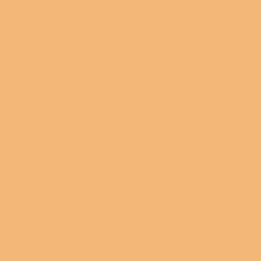 プレスド アイシャドー (レフィル)P ソフト オレンジ 241