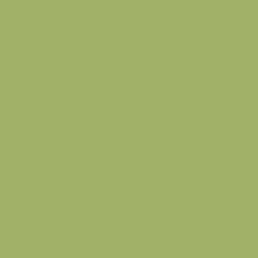 プレスド アイシャドー (レフィル) IR ソフト イエロー グリーン 435 OS