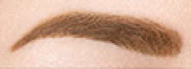 プロフェッショナル アイブロウ ペンシル&パウダー 001 ナチュラルブラウン