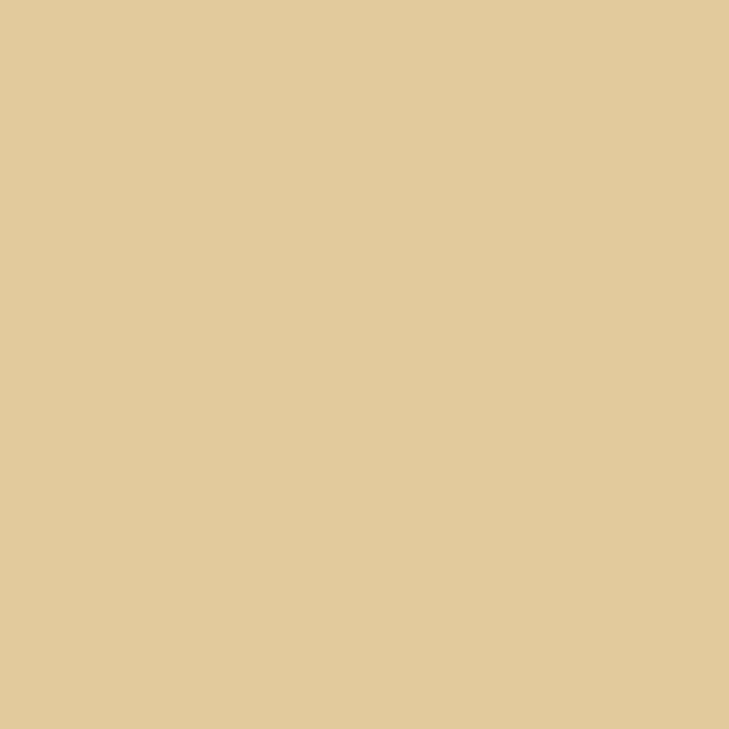 プレスド アイシャドー (レフィル)M ソフト ベージュ 814