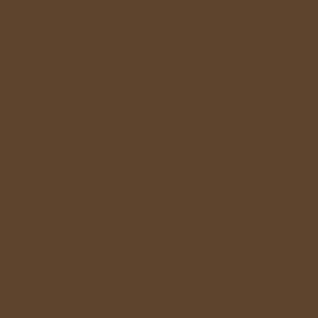 ラスティングアイブロウティント F02 ナチュラルブラウン(限定デザイン)