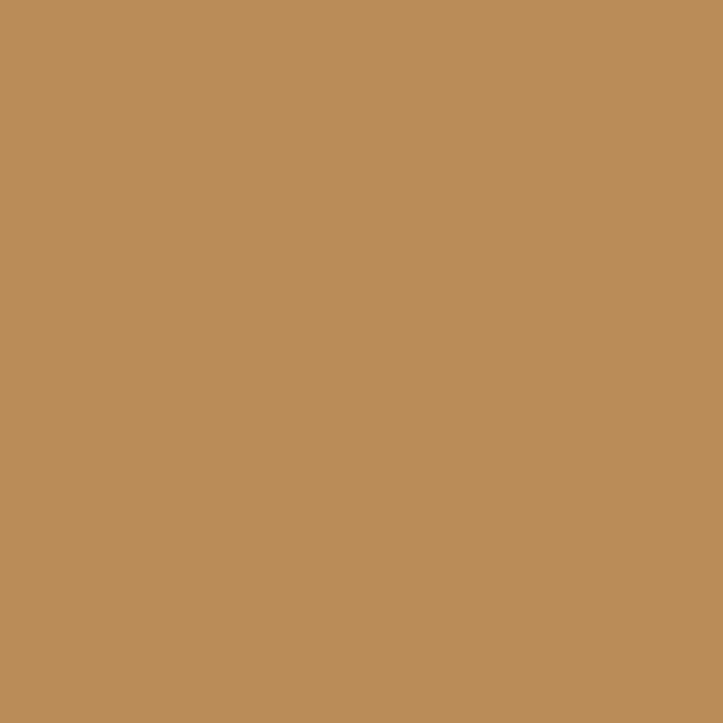ベルベットマットスキンティント SPF30/PA+++ 6521