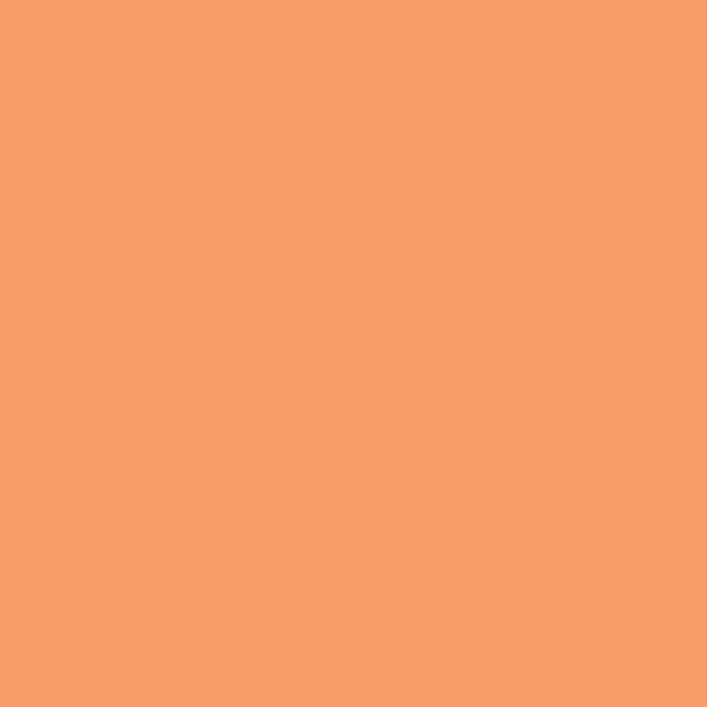 AT サロンネイルエナメル03 オレンジ