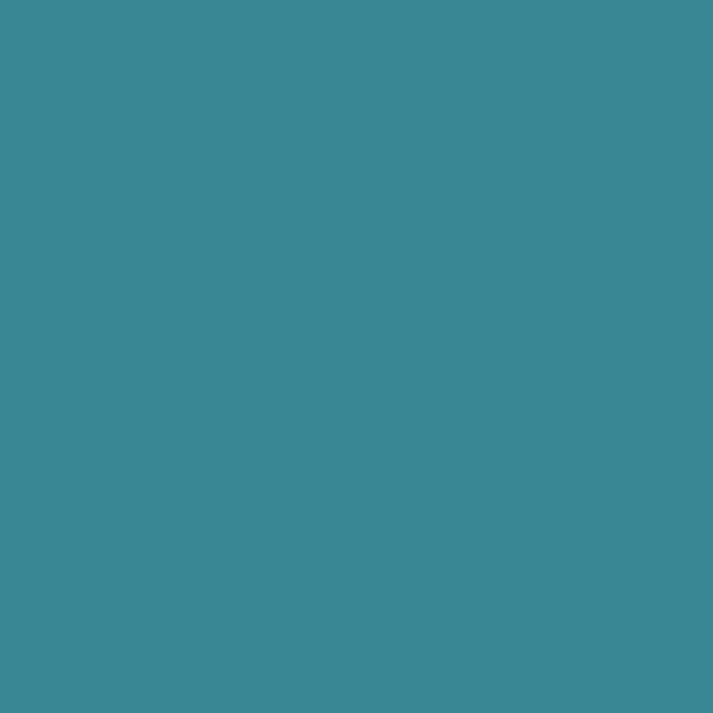 インジーニアス パウダーアイズ NEX-15 ターコイズ
