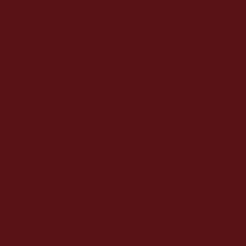 リップ カラー40 スモーク レッド
