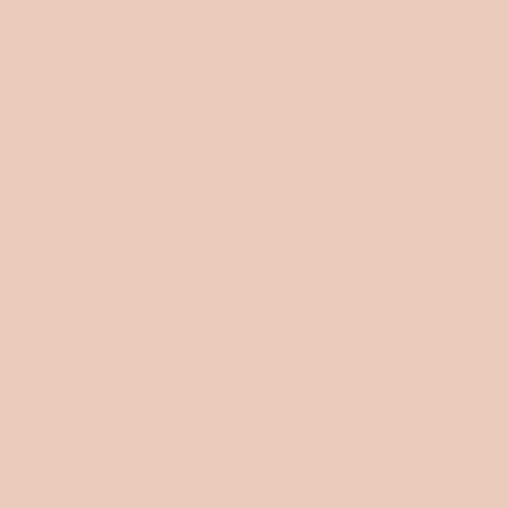 プレスド アイシャドー (レフィル)P ライト コーラル 131