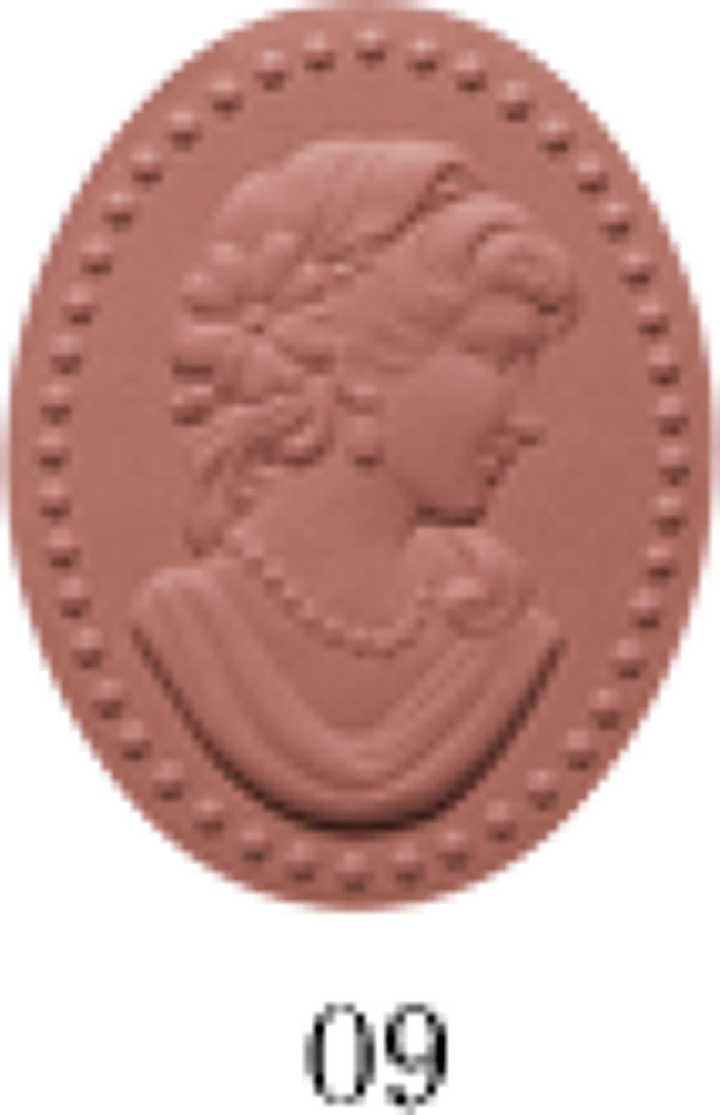 プレスト チークカラー09 Puce ピュス(蚤の色)