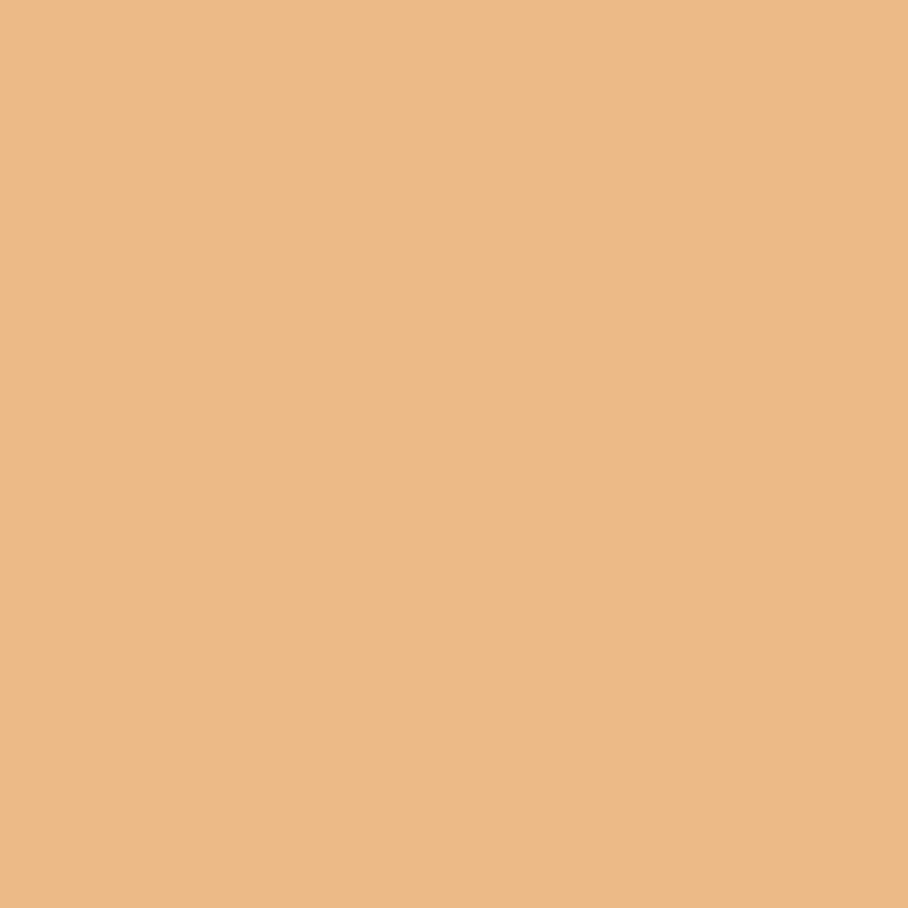 シークレットスキンメイカーゼロ(パクト)03 ややベージュよりの肌
