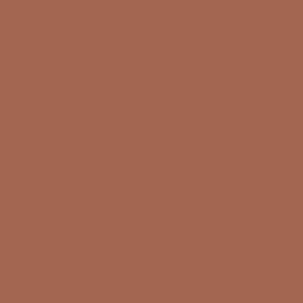 ピュア カラー エンヴィ グロス #03 ワイルド ミンク
