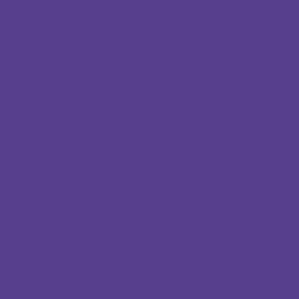 ザ アイシャドウ95 Color Purple (…