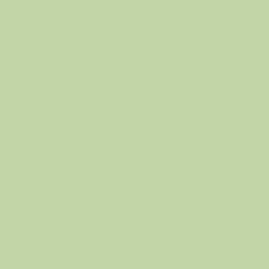 ネイルカラー EX CL-10 グリーン