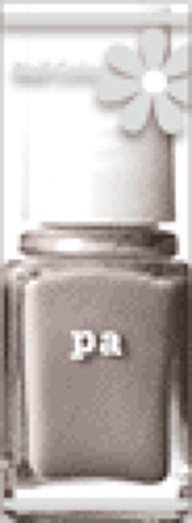 pa ネイルカラー A15