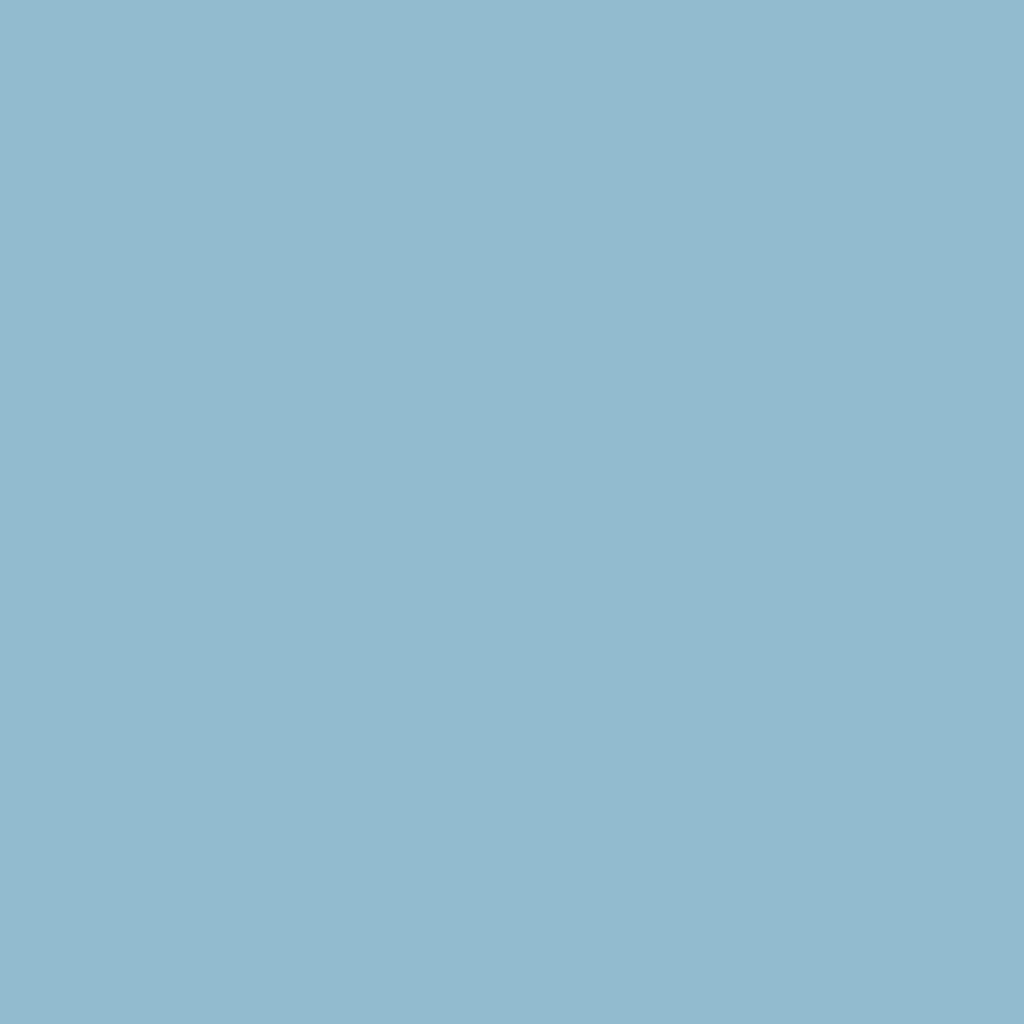 カラー ショー ライナーBU-2