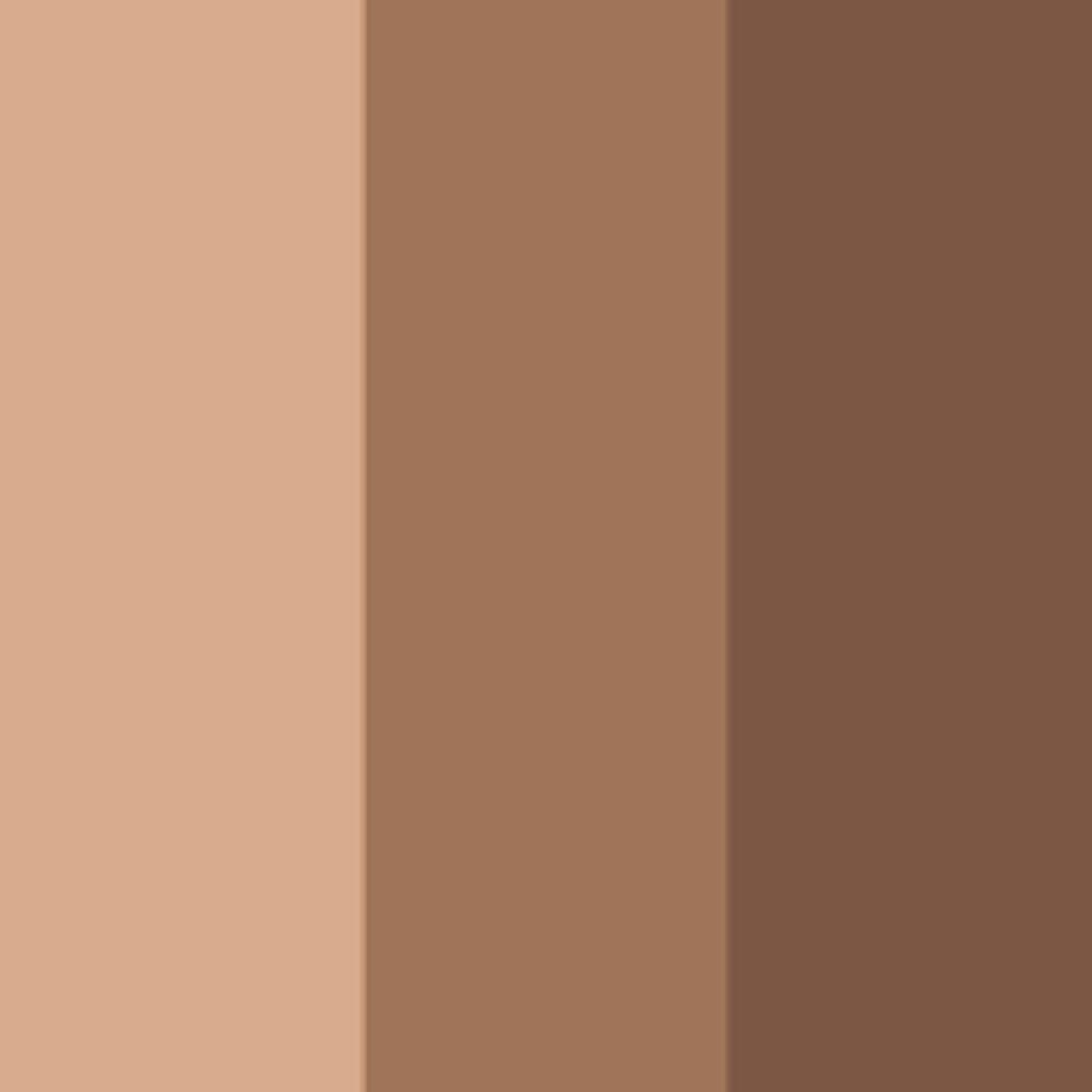 02 ブラウン