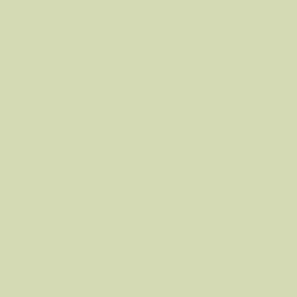 インジーニアス パウダーアイズ NEX-08 シルバーグリーン(生産終了)