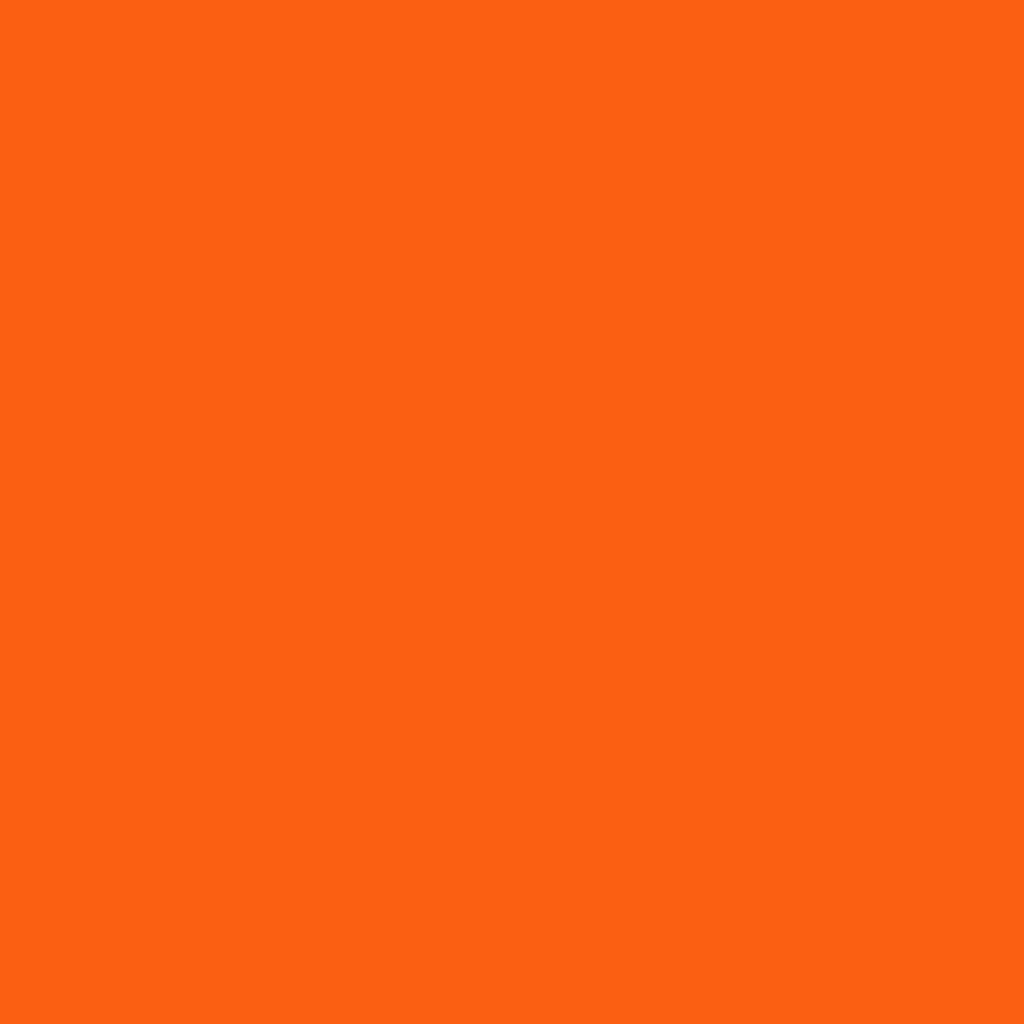 WP ディアダーリンソーダティントOR201 オレンジフロート