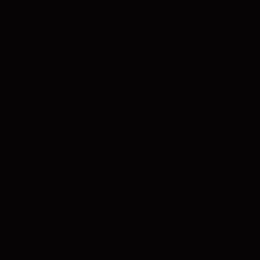 ネイルホリックBK010