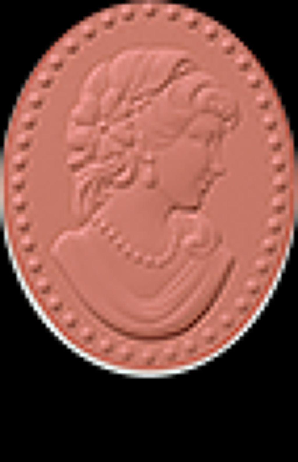 プレスト チークカラー N09 Puce(ピュス)蚤の色