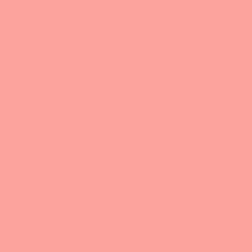 ナチュラル チークN10 オレンジ系ピンク