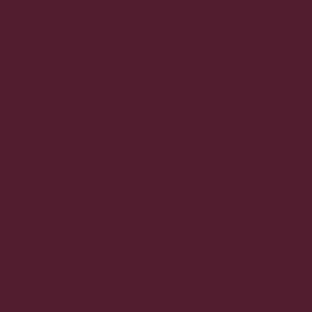 リップ カラー27 ブルーズド プラム