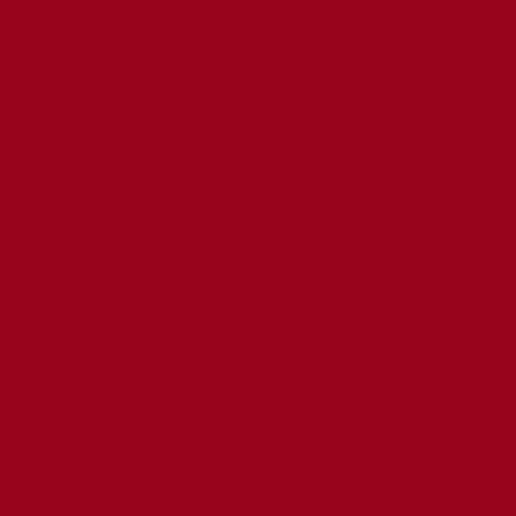 ネイルカラー EX EX-19 マットレッド
